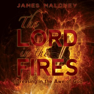 The Lord in the Fires (Audiobook)