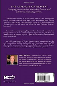 The Panoramic Seer: Bringing the Prophetic into the Healing