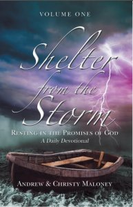 Shelter from the Storm, Vol. 1