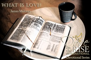 What is Love? (DotR Devotional Series)